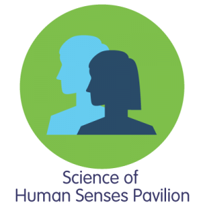 Human-Senses